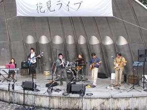 Hanami6
